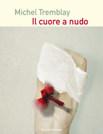 frontale _cuore_05
